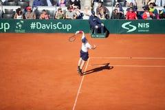 Jamie Murray on Davis Cup, BELGRADE, SERBIA JULY 16, 2016 Royalty Free Stock Photos