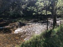 Jamieson River Scene imagen de archivo libre de regalías