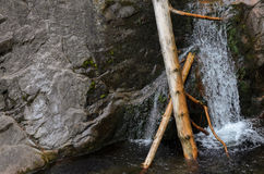 Jammed tree logs into small mountain river Stock Photos