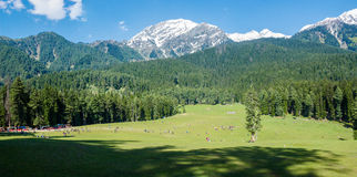 Free Jammu And Kashmir Valley, India Royalty Free Stock Image - 41792426