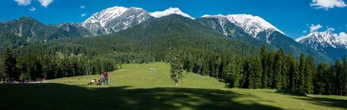 Jammu Kashmir, Mini Switzerland, Baisaran stockfotografie