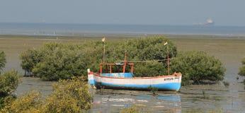 Jamnagar Morski park obraz stock