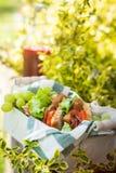 Jamon e sanduíches vegetais foto de stock