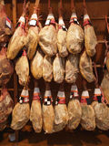 Jamon iberico. Spanish Ham hanging in the shop Royalty Free Stock Photo