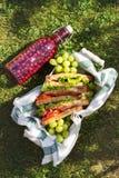 Jamon och grönsaksmörgåsar i en korg, druvor och bärfruktsaft, utomhus- picknick royaltyfri bild