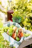 Jamon y bocadillos vegetales en una cesta, uvas y jugo de la baya, comida campestre al aire libre imagen de archivo libre de regalías