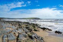 Jamones del sur Devon del Bigbury-En-mar Foto de archivo