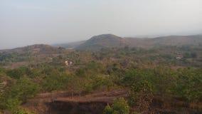 Jamshedpur gräsplanliv Arkivbilder