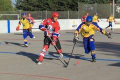 Jan Blasko - czech ball hockey extraleague. Jan Blasko in the czech ball hockey extraleague match between Kert Prague and SK Toptrans Jihlava helnd on 14.9.2013 Royalty Free Stock Photo