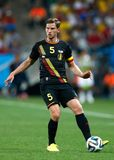Jan Vertonghen Coupe du monde 2014 Foto de Stock
