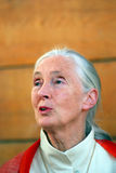 Jane Goodall, Budapest, Hungary. Jane Goodall gives a lecture about chimpanzees in Budapest Stock Photography