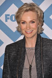 Jane Lynch lizenzfreie stockbilder