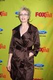 Jane Lynch Royalty Free Stock Images
