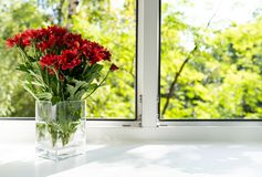 A janela é um vaso de vidro com crisântemos vermelhos imagem de stock royalty free