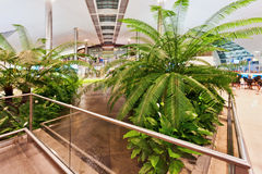 Janela abstrata no aeroporto Imagens de Stock Royalty Free