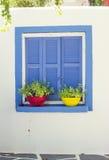 Janela azul com vasos de flores Fotos de Stock Royalty Free