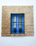 Janela azul na parede de tijolo dentro de um pátio Cordovan, com potenciômetros de flor imagens de stock royalty free