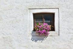 Janela com flores coloridas em uma parede branca Imagens de Stock Royalty Free