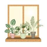 Janela com os houseplants tropicais em uns potenci?metros ilustração do vetor