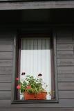 Janela com vasos de flores Imagens de Stock Royalty Free