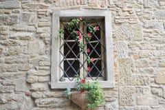 Janela com videira da flor imagem de stock
