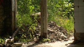 Janela da casa abandonada velha ou porta e natureza quebrada Inclina??o acima filme