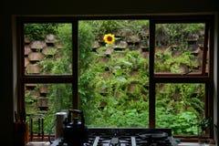 Janela da cozinha Imagens de Stock