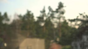 Janela da limpeza da mão com aspirador de p30 vídeos de arquivo