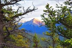 Janela das naturezas - canadense Montanhas Rochosas fotografia de stock