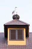 Janela de madeira do vintage Imagem de Stock Royalty Free