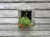 Janela de uma casa de log decorada com flores Imagens de Stock