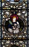 Janela de vitral da catedral de Christchurch Imagens de Stock