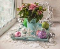 Janela do inverno com poinsétia (pulcherrima do eufórbio) com rosa Fotografia de Stock