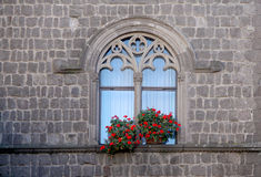 Janela gótico e flores Foto de Stock Royalty Free