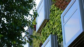 Janela na construção verde moderna, conceptWindows da natureza na construção moderna com jardins verticais video estoque