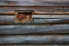 janela pequena na parede do log Foto de Stock Royalty Free