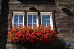 Janela suíça tradicional com flores Imagem de Stock Royalty Free