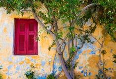 Janela tradicional vermelha ao lado de um jasmim em Plaka A vizinhança a mais pitoresca em Atenas Imagem de Stock Royalty Free