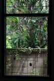 A janela uma gaiola do metal Foto de Stock Royalty Free