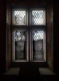 A janela velha Imagem de Stock