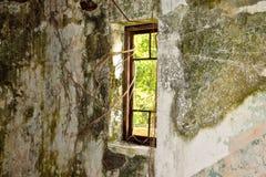 A janela velha de dano com banyan toca em uma sala escura fotos de stock royalty free