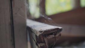 Janela velha em uma casa abandonada Teias de aranha no quadro de janela video estoque