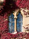 Janela velha na igreja de Cristo em Oxford fotografia de stock
