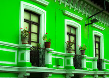 Janela verde Imagem de Stock Royalty Free