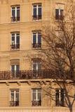 Janelas alinhadas na construção parisiense típica Fotografia de Stock Royalty Free