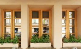 Janelas de madeira modernas decoradas fotografia de stock royalty free