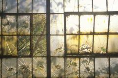 Janelas quebradas na fábrica abandonada, St Louis do leste, Missouri Imagem de Stock Royalty Free
