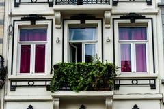 Janelas velhas mas renovadas na parte histórica de Bruxelas Imagem de Stock