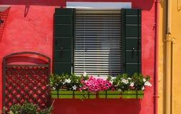 Janelas verdes de Burano com flores, Vêneto Imagens de Stock Royalty Free