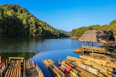 A jangada de bambu em Pang Ung, Mae Hong Son, Tailândia Imagem de Stock